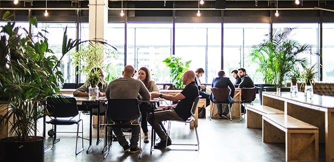 Amsterdam krijgt 's werelds eerste incubator voor bloemen-startups