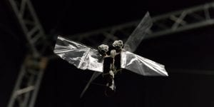 DelFly Nimble: Insect-like flying drone from Delft University could monitor stock in warehouses