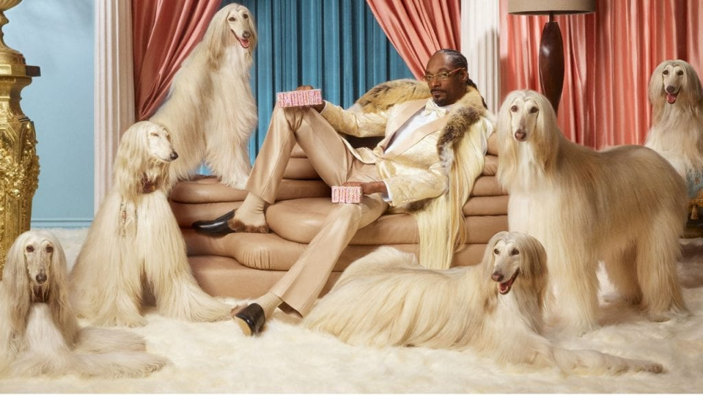 Snoop Dogg invests in Swedish fintech giant Klarna