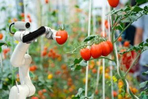 Making farming smarter: These 10 European agtech startups use robots to grow food!