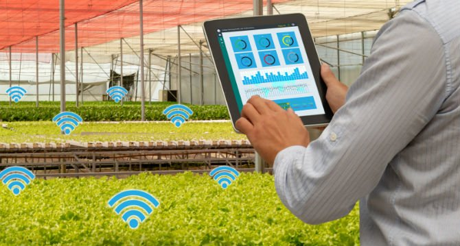 10 urban farming startups in Europe that help grow crops without a farm