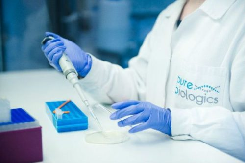 This Polish biotech startup working on new breast cancer treatment secures €6.7M funding